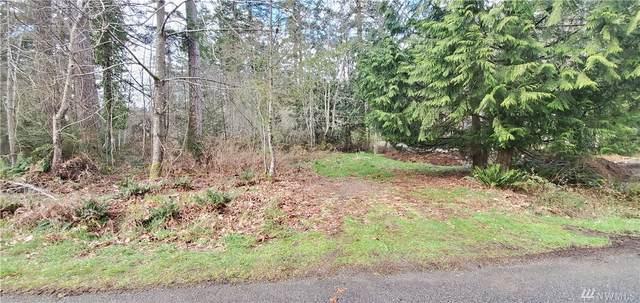 381 E Timberlake Dr, Shelton, WA 98584 (#1583277) :: Better Properties Lacey