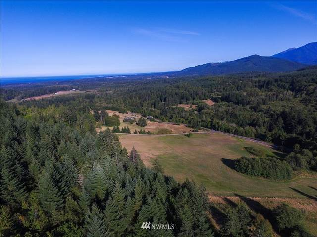 0 Adam's Avenue, Port Angeles, WA 98363 (#1583306) :: Capstone Ventures Inc