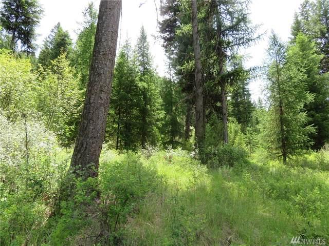 0-Lot 5 Boulder Creek Rd, Curlew, WA 99118 (#1583595) :: Alchemy Real Estate