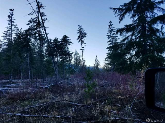 291 Ermine Lp, Cle Elum, WA 98922 (#1583604) :: Real Estate Solutions Group