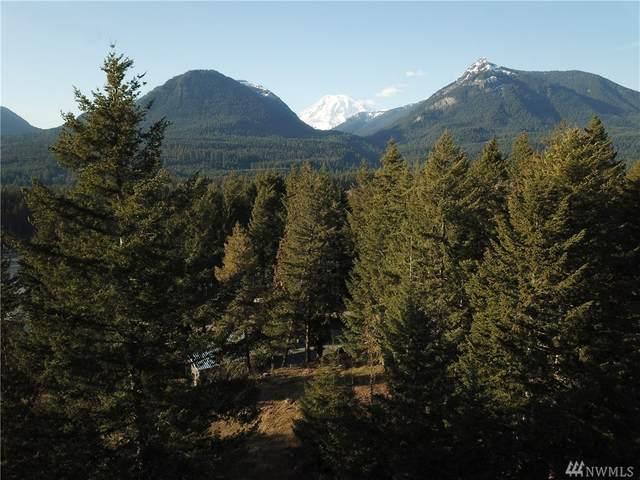 0 Alpine Dr, Packwood, WA 98361 (#1584150) :: Hauer Home Team