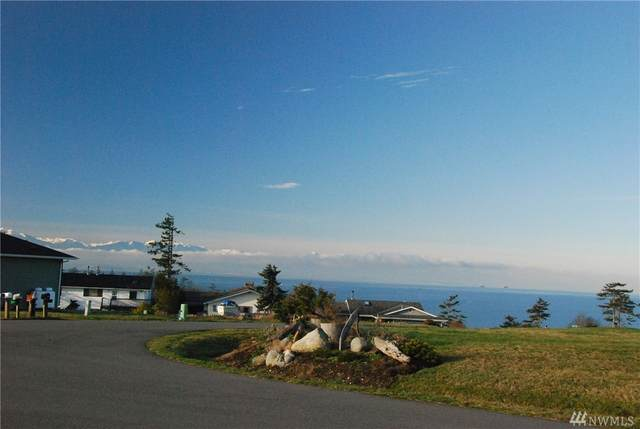 0 El Cine, Coupeville, WA 98239 (#1584358) :: The Kendra Todd Group at Keller Williams