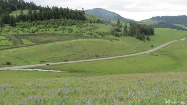 10 Vast Valley Rd, Oroville, WA 98844 (#1584462) :: Engel & Völkers Federal Way