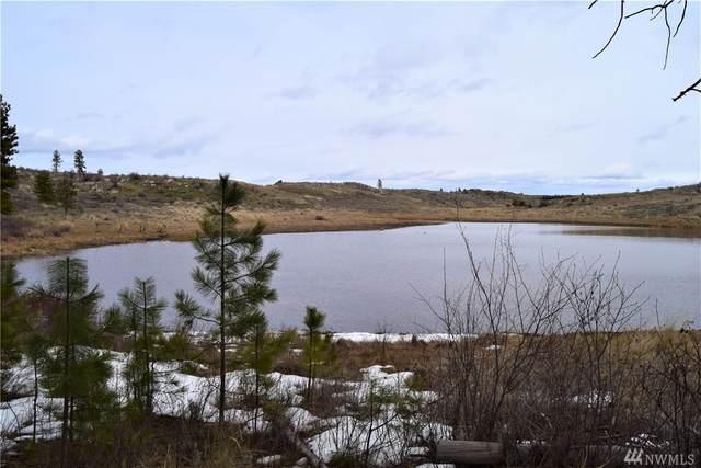 223-Q Cameron Lake Loop Rd, Okanogan, WA 98840 (#1584467) :: Engel & Völkers Federal Way