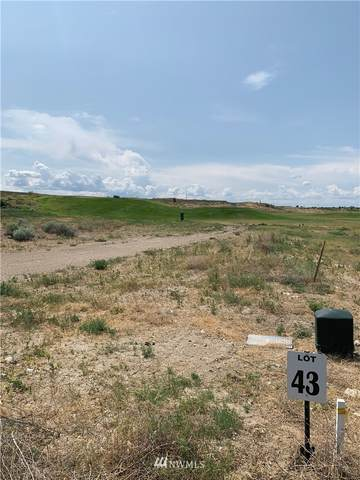 6549 SE Hwy 262  Lot 43, Othello, WA 99344 (#1584832) :: Becky Barrick & Associates, Keller Williams Realty