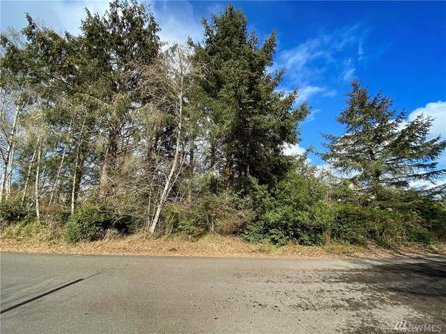 104 Sunrise Ave SE, Ocean Shores, WA 98569 (#1585213) :: Keller Williams Realty