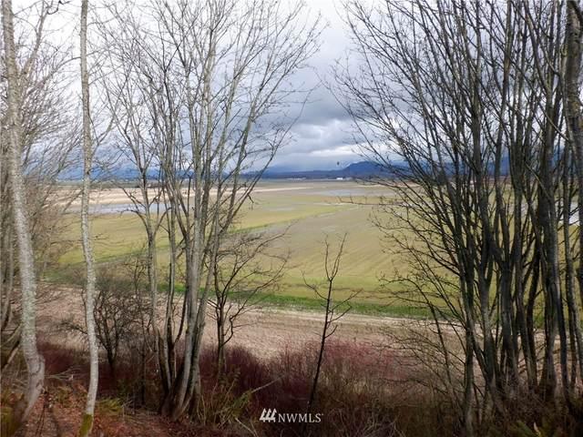 0 Best Road, Mount Vernon, WA 98273 (#1585437) :: Keller Williams Realty
