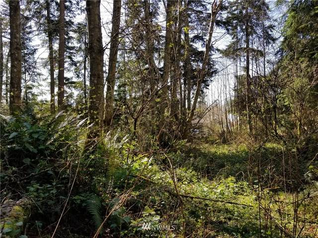0 Sr 525, Coupeville, WA 98239 (MLS #1585485) :: Community Real Estate Group
