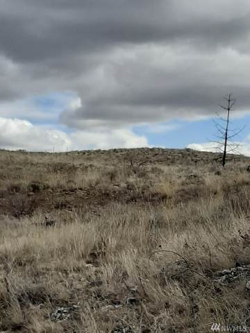 0-nna Springs Canyon Rd Lot36, Orondo, WA 98834 (#1585545) :: Engel & Völkers Federal Way