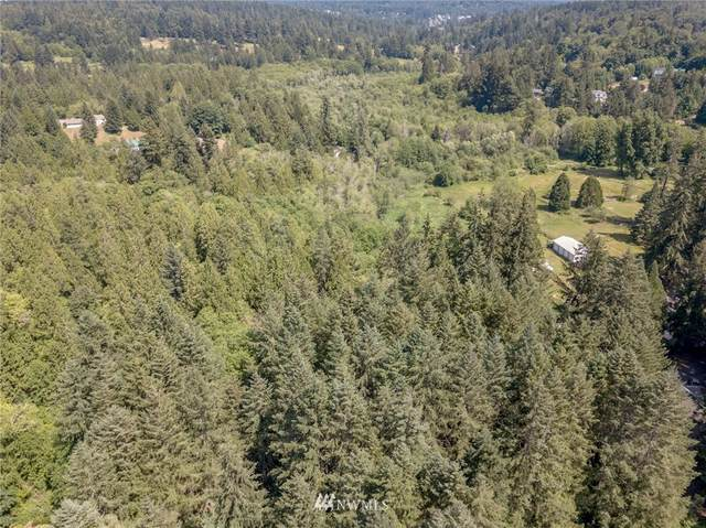 0 76th Avenue NW, Gig Harbor, WA 98335 (MLS #1586029) :: Brantley Christianson Real Estate