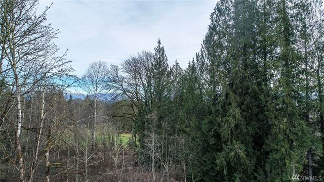 10327 Fay Rd, Carnation, WA 98014 (#1586548) :: Northern Key Team