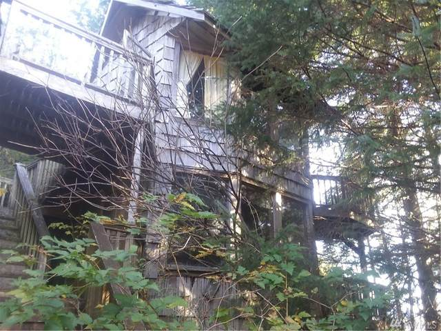 17244-MP17 S Hoko/Ozette Rd, Clallam Bay, WA 98326 (#1586681) :: Capstone Ventures Inc