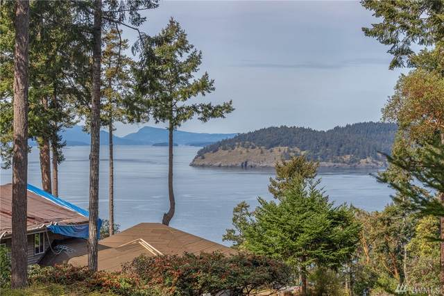2-Lot Quiet Place, San Juan Island, WA 98250 (#1587810) :: Real Estate Solutions Group