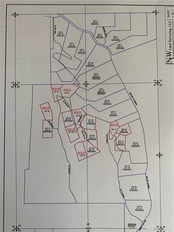 12-XX Whiskey Mountain Lot 12, Tonasket, WA 98855 (#1587837) :: Real Estate Solutions Group