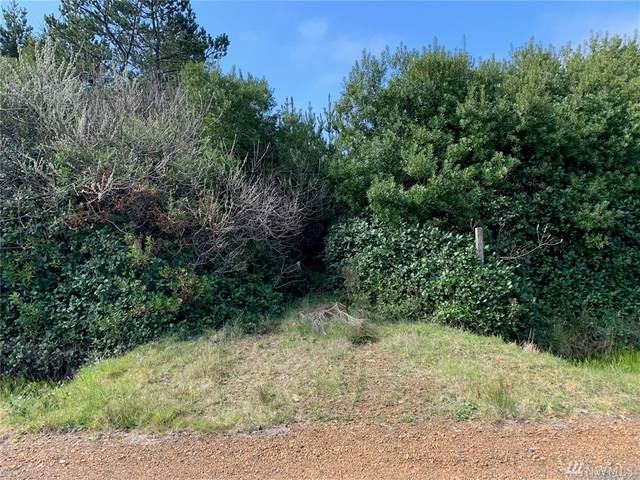 463 Seashore St, Ocean Shores, WA 98569 (#1588208) :: Better Properties Lacey