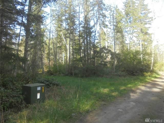 9999 Chickadee Lane, Quilcene, WA 98376 (#1589535) :: The Kendra Todd Group at Keller Williams