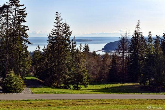 99999 Doe Run, Sequim, WA 98382 (#1590876) :: NW Homeseekers