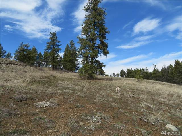 0-Lot 43 Union Ridge Rd, Republic, WA 99166 (MLS #1591269) :: Nick McLean Real Estate Group