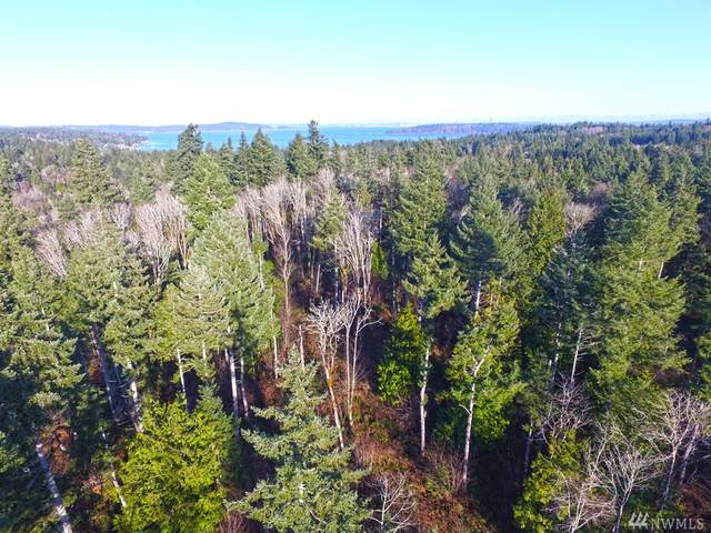 2 Forest View Lot 2 Lane, Port Orchard, WA 98366 (#1591774) :: Hauer Home Team