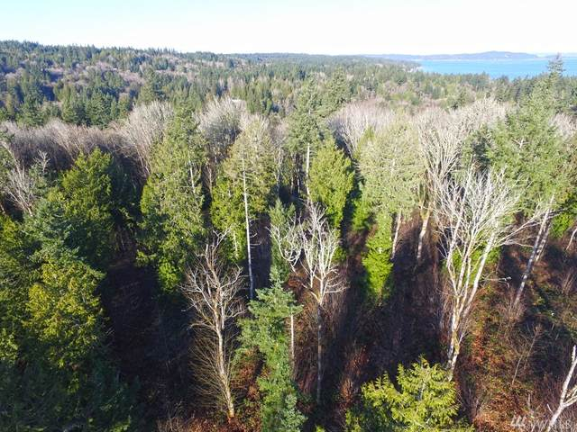 4 Forest View Lot 4 Lane, Port Orchard, WA 98366 (#1591781) :: Hauer Home Team