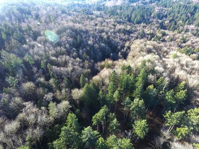 6 Forest View Lot 6 Lane, Port Orchard, WA 98366 (#1591791) :: Ben Kinney Real Estate Team