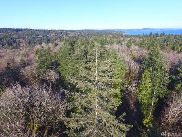 13 Forest View Lot 13 Lane, Port Orchard, WA 98366 (#1591799) :: Hauer Home Team