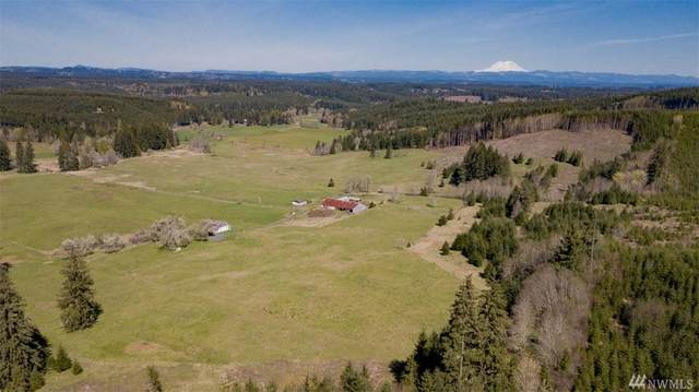 0 Ploegman Rd, Chehalis, WA 98532 (#1592177) :: Ben Kinney Real Estate Team