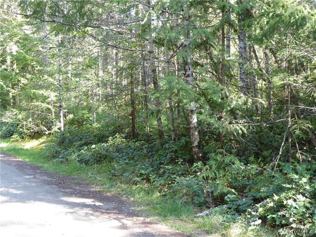 0 Leda Parcel 2 Lane, Port Angeles, WA 98363 (#1592269) :: Mike & Sandi Nelson Real Estate