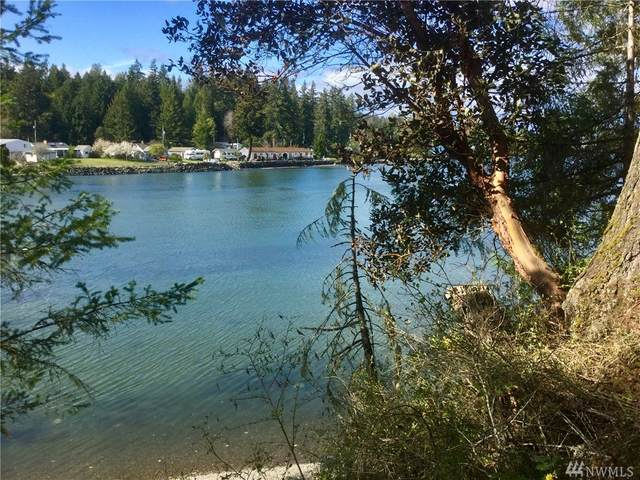 0 E Grapeview Loop Rd, Allyn, WA 98524 (#1592287) :: Lucas Pinto Real Estate Group