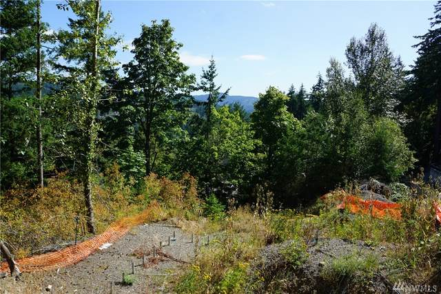 108 32nd St, Bellingham, WA 98225 (#1592790) :: Lucas Pinto Real Estate Group