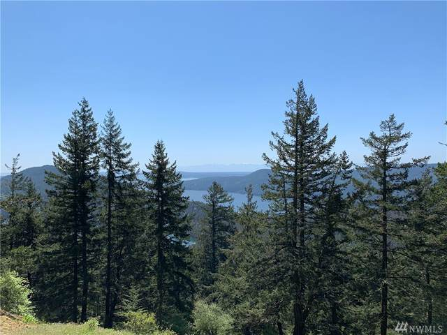 0 Vusario Lane S, Orcas Island, WA 98245 (#1592854) :: NW Home Experts