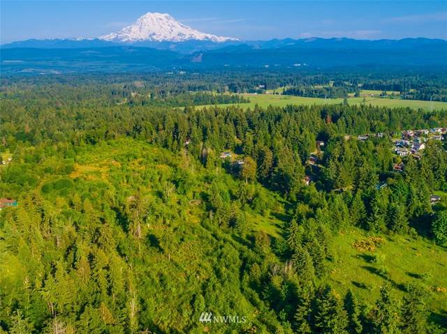 24222 110th Avenue E, Graham, WA 98338 (#1592985) :: Alchemy Real Estate