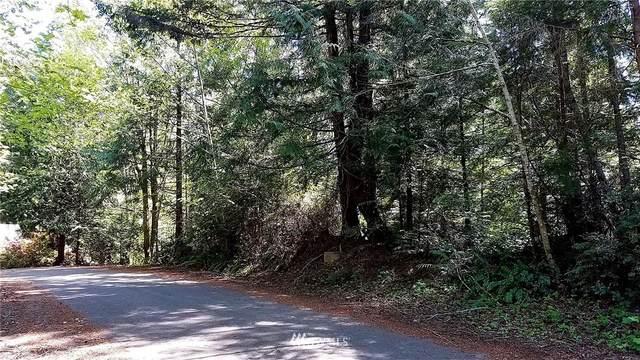 68 Trail Head Loop, Lilliwaup, WA 98584 (#1593089) :: Mike & Sandi Nelson Real Estate