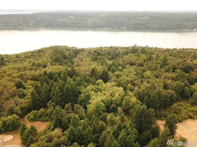 0 SW 280th Street, Vashon, WA 98070 (#1593824) :: Pacific Partners @ Greene Realty