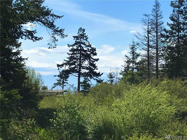 62 Grandview Drive, Friday Harbor, WA 98250 (#1594078) :: Icon Real Estate Group