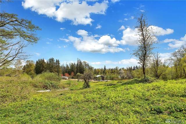 0-XXX Stein Hill Lane, Custer, WA 98240 (#1594146) :: The Shiflett Group