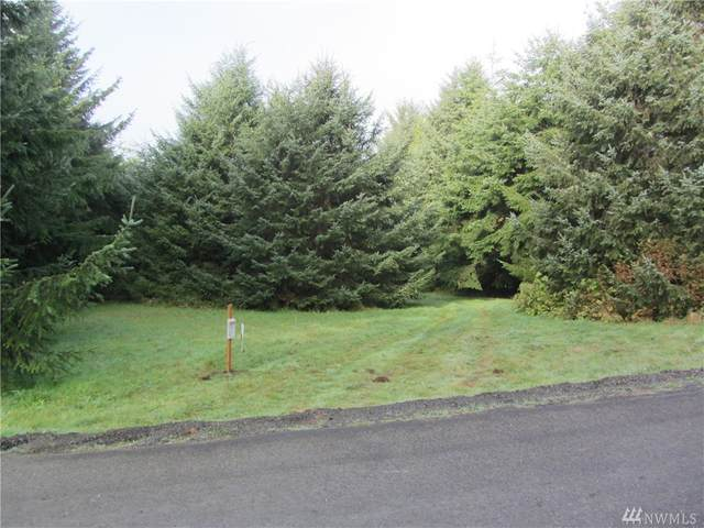 8 Sunset Boulevard, Ocean Shores, WA 98569 (#1594260) :: Better Homes and Gardens Real Estate McKenzie Group