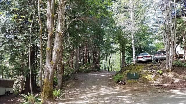 58 Trail Head Loop, Lilliwaup, WA 98584 (#1595066) :: Mike & Sandi Nelson Real Estate
