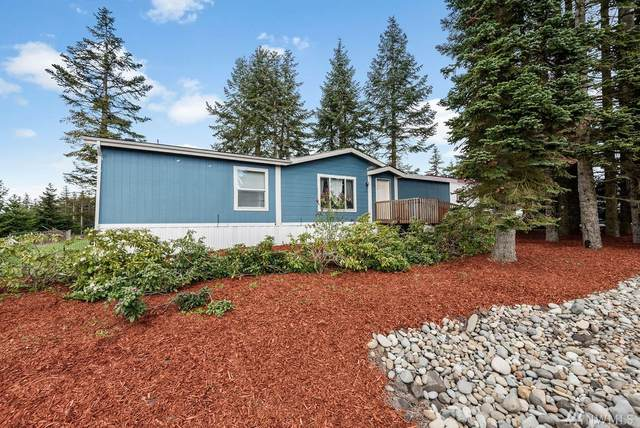 103 Noble Estates Dr, Winlock, WA 98596 (#1595941) :: Northern Key Team