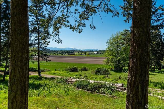 417 Jacobs Rd, Coupeville, WA 98239 (#1596666) :: Real Estate Solutions Group