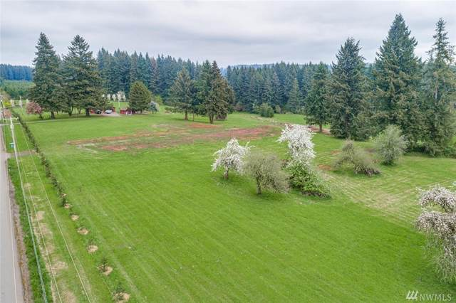 22403 NE 169th Street, Brush Prairie, WA 98606 (#1596954) :: Ben Kinney Real Estate Team