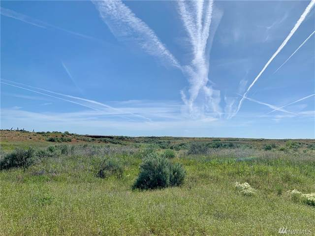 0 Wilbur Airport Rd Lot 6, Wilbur, WA 99185 (#1597054) :: Pickett Street Properties
