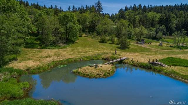 0 Curtis Hill Rd, Chehalis, WA 98532 (#1597110) :: Ben Kinney Real Estate Team
