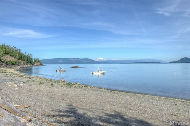 193-Lower Buoy Bay Rd, Orcas Island, WA 98245 (#1599222) :: Lucas Pinto Real Estate Group