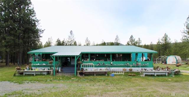 21 Tipton Rd, Kettle Falls, WA 99141 (#1599296) :: Priority One Realty Inc.