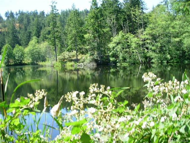 1959 Egg Lake Rd, Friday Harbor, WA 98250 (#1599314) :: Capstone Ventures Inc