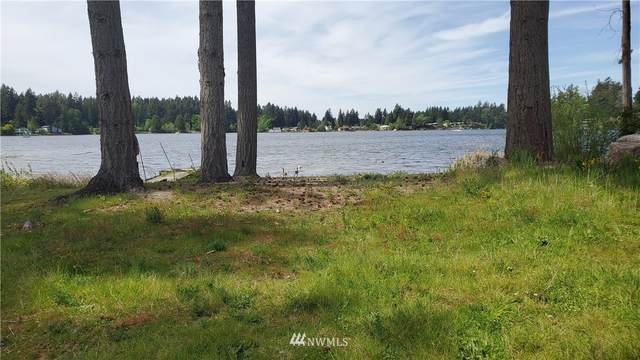 6500 33rd Avenue SE, Lacey, WA 98503 (MLS #1599570) :: Community Real Estate Group