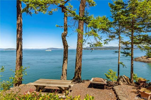 122 Willows Lane, San Juan Island, WA 98250 (#1599750) :: Becky Barrick & Associates, Keller Williams Realty