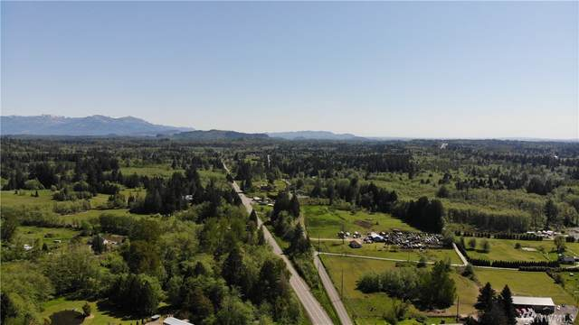 1680 Alger Cain Lake Road, Sedro Woolley, WA 98284 (#1600064) :: Icon Real Estate Group