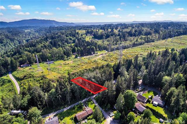 0 Friar Creek Rd., Monroe, WA 98272 (#1600458) :: Hauer Home Team
